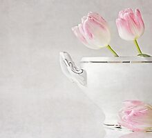 soupes de tulipes by lucyliu