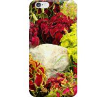 Coleus Garden Patch iPhone Case/Skin