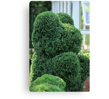 green bear topiary   Canvas Print