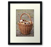 Basket  mushrooms Framed Print