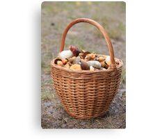 Basket  mushrooms Canvas Print