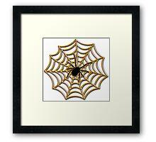 Halloween Spider Web Framed Print