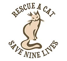 Rescue A Cat Save Nine Lives Photographic Print