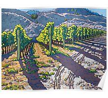 Vineyard at Road 13 Poster