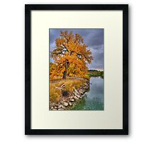 Autumn at Norms Island Framed Print