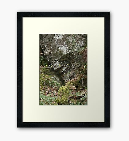 prince of the rock Framed Print