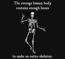 Skeleton Bones in the Average Human Body by TheShirtYurt