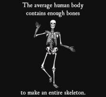 Skeleton Bones in the Average Human Body by TheShirtYurt