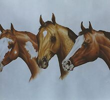 Western Breeds by louisegreen