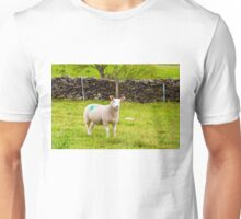 View of English grazing sheep in countryside Unisex T-Shirt