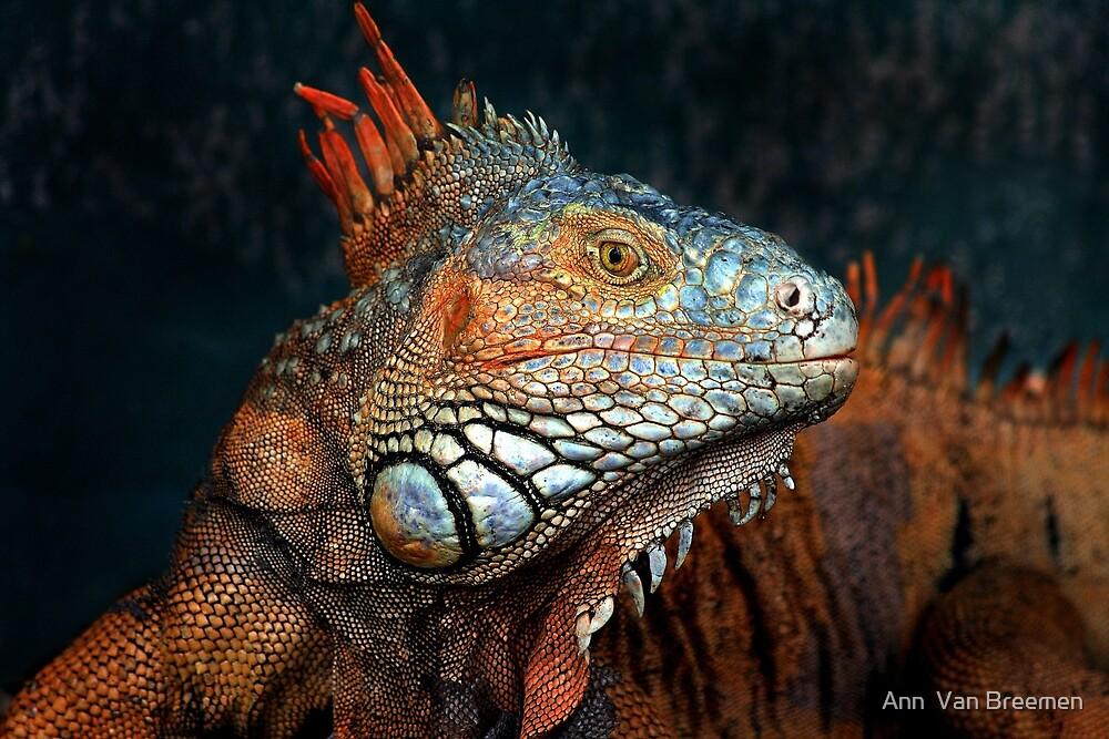 Prehistoric Beauty by Ann  Van Breemen