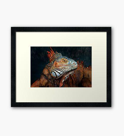 Prehistoric Beauty Framed Print