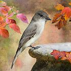 Eastern Phoebe in Louisiana Autumn by Bonnie T.  Barry