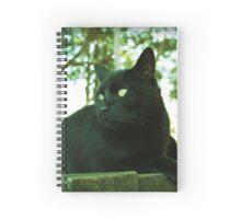 Beautiful Black Cat Spiral Notebook