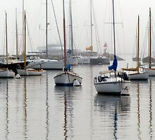 Foggy Mooring by phil decocco