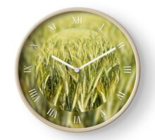 Spring cereal plants grow Clock