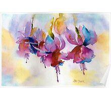 Fuchsia Watercolor II Poster