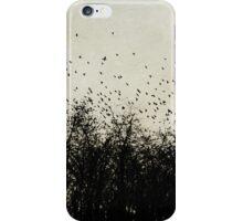flying birds iPhone Case/Skin