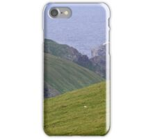 Muckle Flugga iPhone Case/Skin