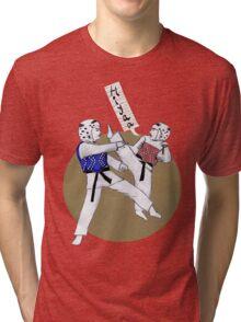 Taekwondo Martial Art Tri-blend T-Shirt