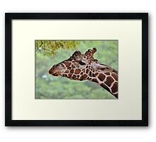 This is my best side Framed Print