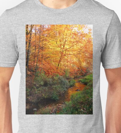 stream in color lll Unisex T-Shirt