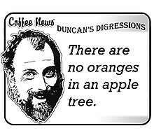 There are no oranges in an apple tree Photographic Print