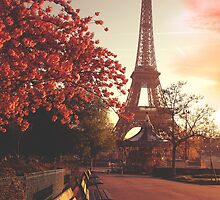 Evening in Paris by Sol Noir Studios