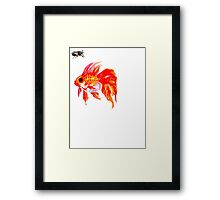 Cicada and Goldfish Framed Print