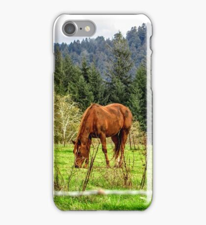 Chow Time iPhone Case/Skin