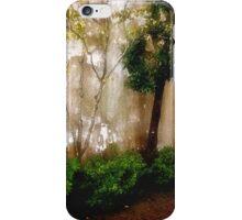 Charleston Detail iPhone Case/Skin