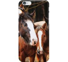 Gypsy Watering Hole iPhone Case/Skin