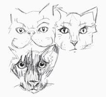 Feline Facial Structures by HiddenStash