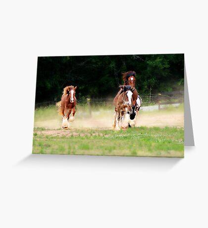 Gypsy Race Greeting Card