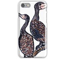 The Cormorants iPhone Case/Skin