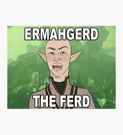 ERMAHGERD THE FERD Photographic Print