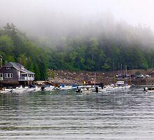 Hidden Cove by njordphoto