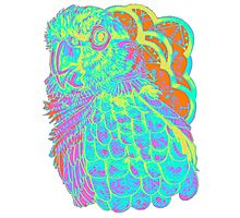 Spring Electric Conure Photographic Print