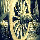 Wagon Wheel by Karen Tregoning