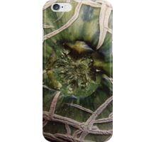 Cantaloupe Closeup iPhone Case/Skin