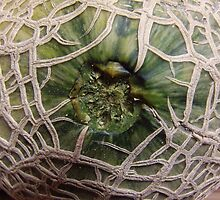 Cantaloupe Closeup by James Brotherton