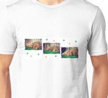 3 Ginger Kittens Unisex T-Shirt