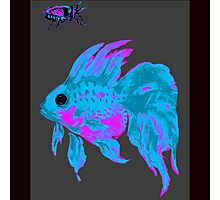 cool electric goldfish & bug Photographic Print