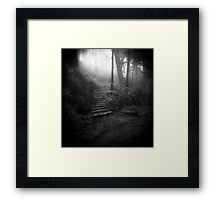 Mountain Steps B&W (Holga) Framed Print