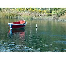 Meadow Pond Photographic Print