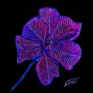 Purple Flower by Sarah Curtiss
