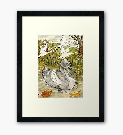The Ugly Duckling's Lament Framed Print