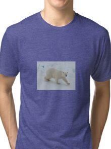 Polar Bear Prowl Tri-blend T-Shirt