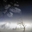 After Fall by Igor Zenin