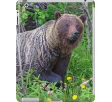 Where did you come from?! iPad Case/Skin